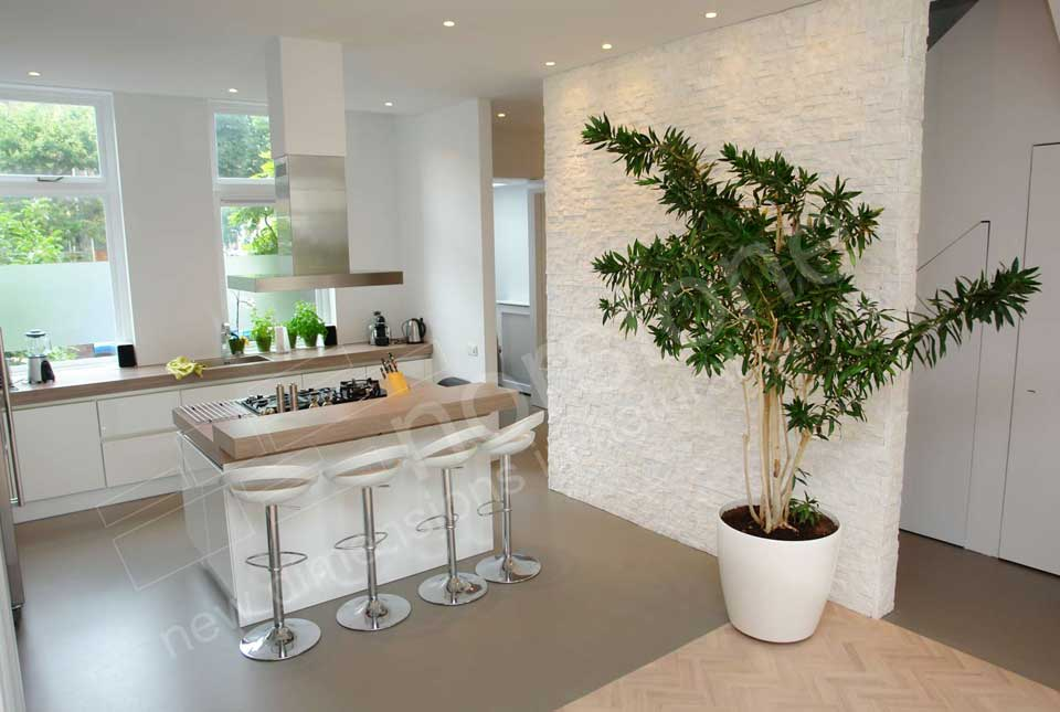 Natural Stone Wall in Modern Kitchen