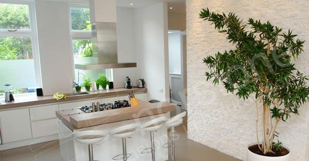 Rock Panel White Quartz